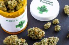 Medical Cannabis Thailand